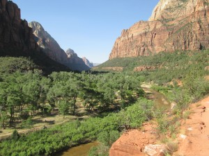 5 Unusual Things to Do in Zion National Park2