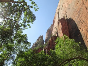 5 Unusual Things to Do in Zion National Park
